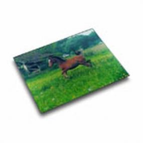 Läufer Motiv-Poster Schreibunterlage  46616