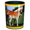 Läufer Motiv-Poster Papierkorb Pferd + Fohlen 26557  - klein