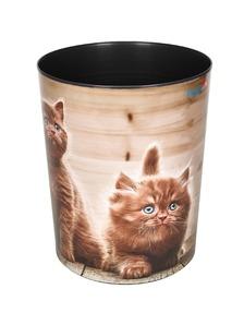 Läufer Papierkorb neugierige Katze