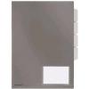 FolderSys Sichthüllen-Register 40002  - klein
