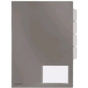 FolderSys Sichthüllen-Register 40002