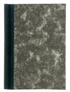 MAUL Klemmbinder 24052