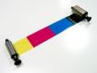 R3011 - Farbband 5-färbig f.Mod.Pebble u. Dualys - klein